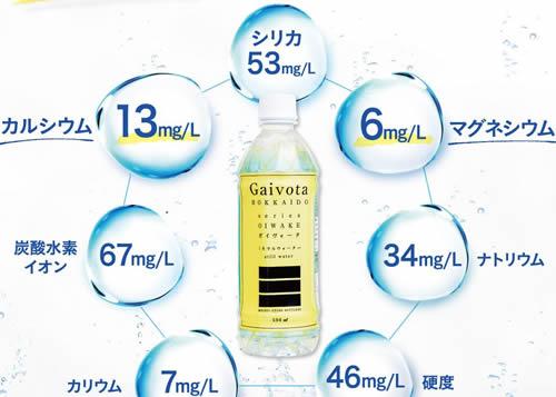 ガイヴォータ(Gaivota)成分シリカ53mg
